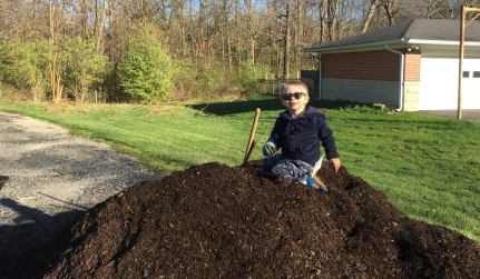 Little guy on a huge pile of mulch
