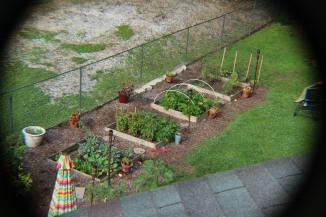 My garden beds from our roof